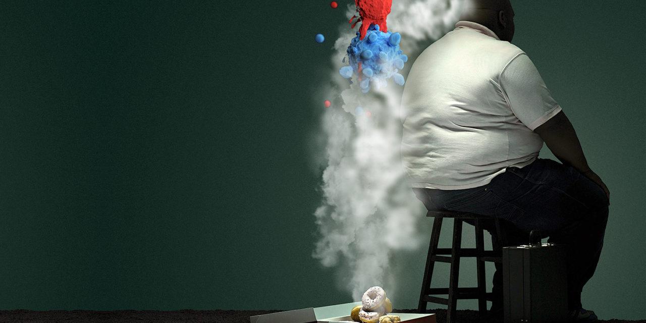 """L'obesità è causa di cellule """"zombie"""" nel cervello"""